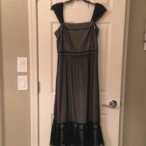 Loft lace midi dress